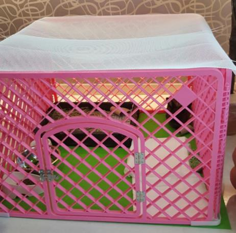 4-piece plastic playpen for 1 rabbit with mesh to cover top